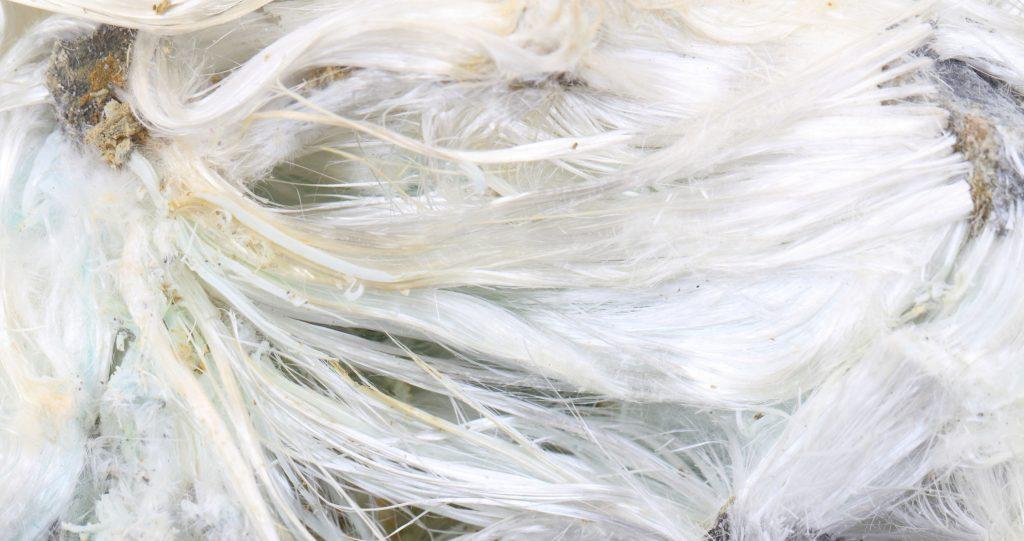 Asbestos Mineral Sample