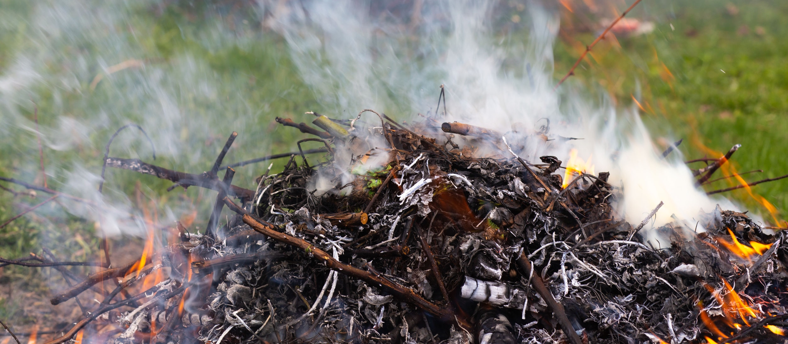 Fire composed of yard debris